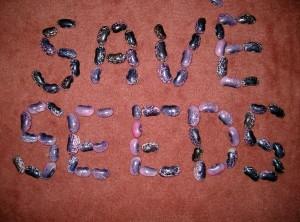 SaveSeeds-300x222